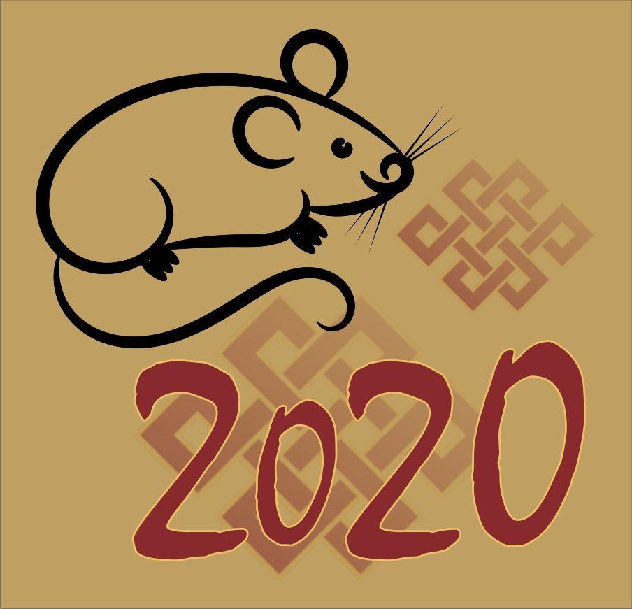 Rok 2020 Kovový potkan