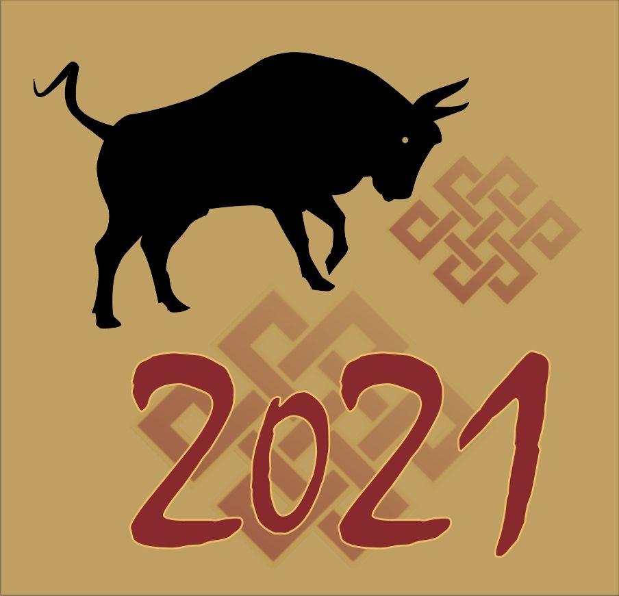nový rok kovového byvola