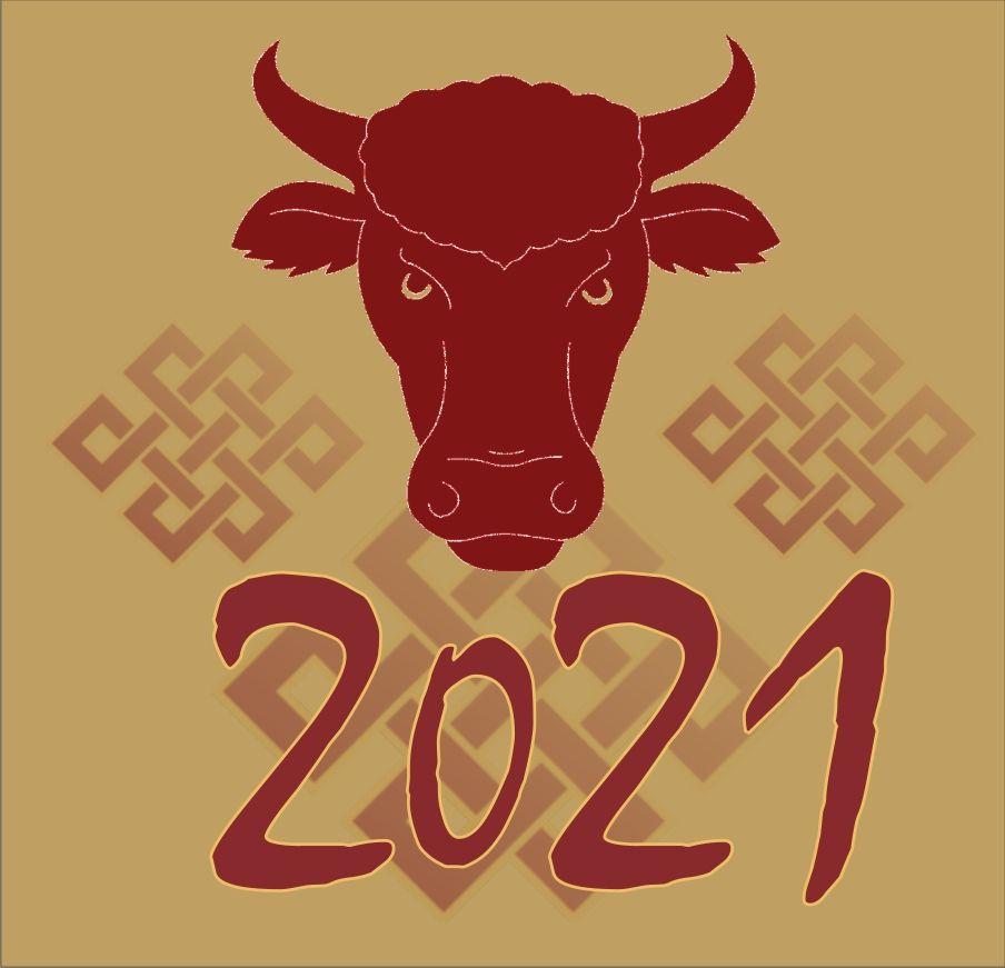 Rok kovového byvola
